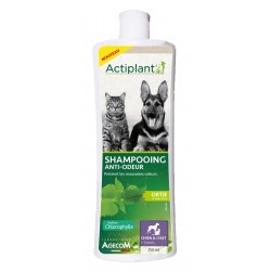 Shampooing anti odeurs...